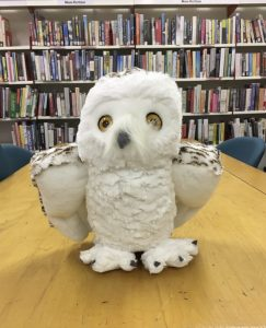 News: Mascot, Crafts Sale, Fife History and Book Reviews